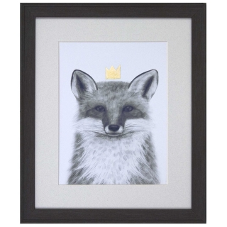 Crowned Fox Picture