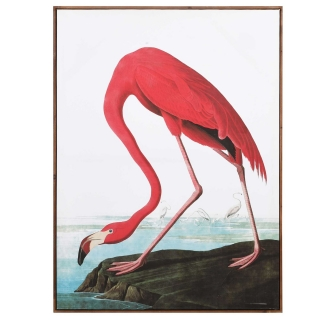 Flamingo Picture, Pink