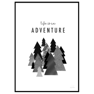 Life Is An Adventure Picture