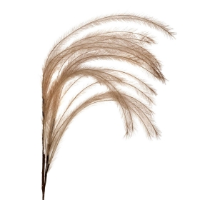 Faux Feather Plume, Beige