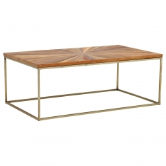 Jupiter Coffee Table, Wood Top With Antique Brass Leg