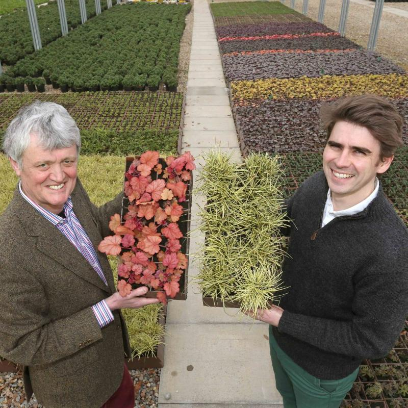 Barker and Stonehouse brings first living wall to Teesside