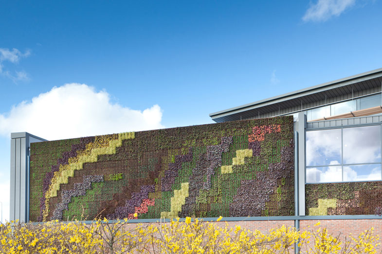 Living wall at Teesside Park store